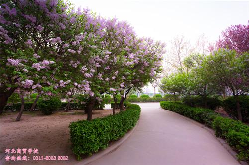河北商贸学校校园